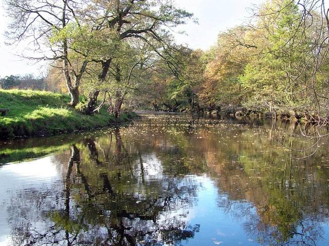 River Derwent (Derbyshire)
