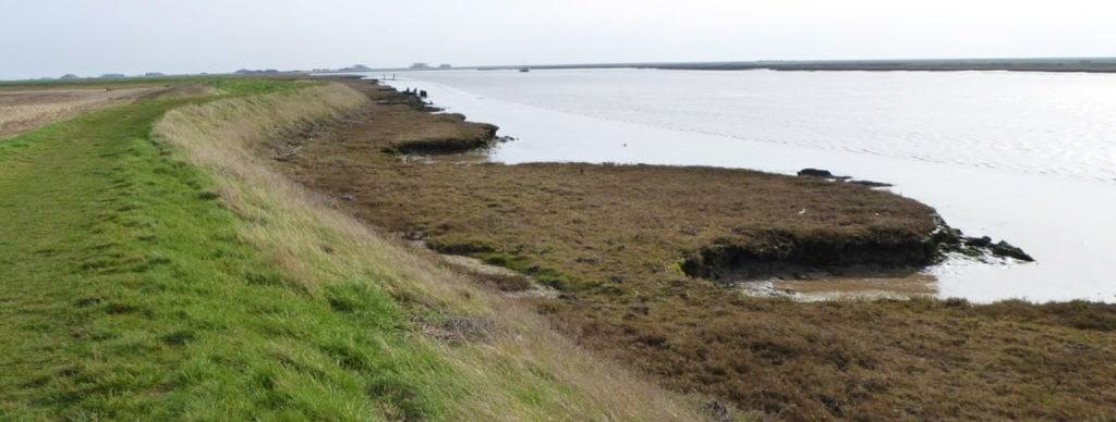 River Ore