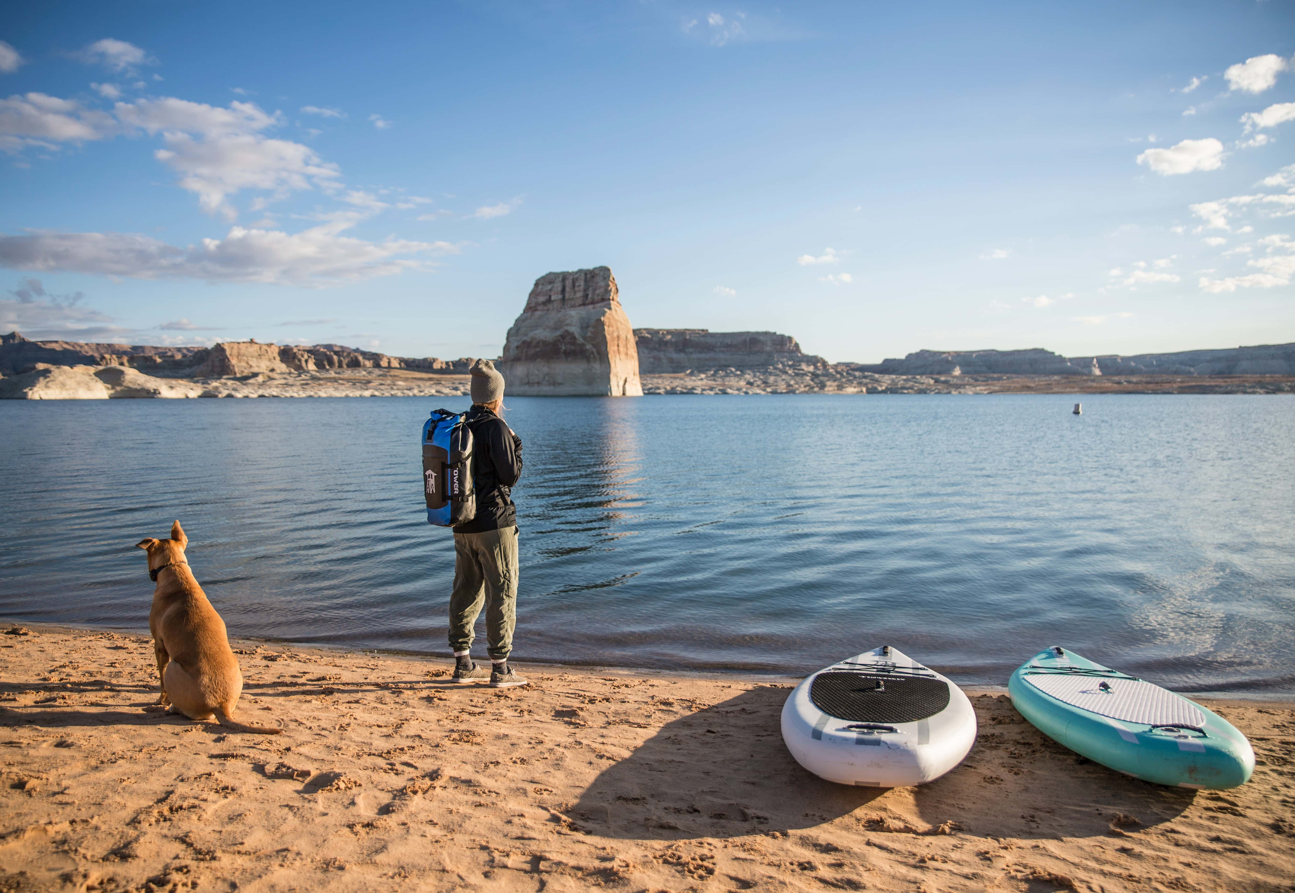 Getting your dog use to the paddle boarding being set up
