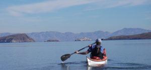 Sea Kayaker paddling away from the camera
